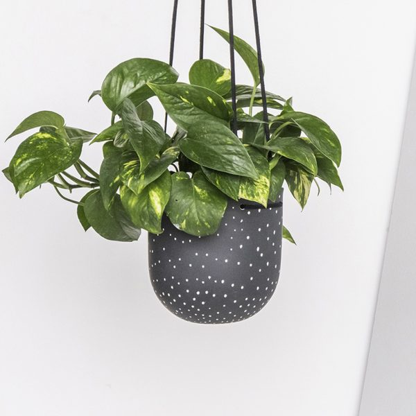 Stak Ceramics Black and White Dot Hanging Planters